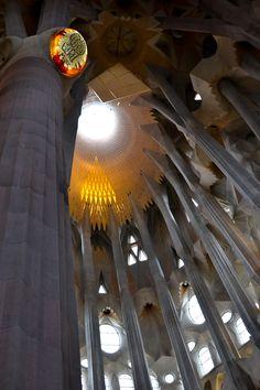 La Sagrada Familia #architecture #gaudi #barcelona