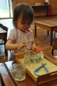 toddler montessori flower arranging. great practical life activity.