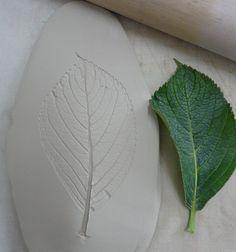 Leaf impression in clay