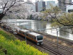 桜と外濠と鉄道と。桜が開花しました!(2015年3月春)【JR中央・総武線(市ヶ谷-飯田橋間)】 - YouTube