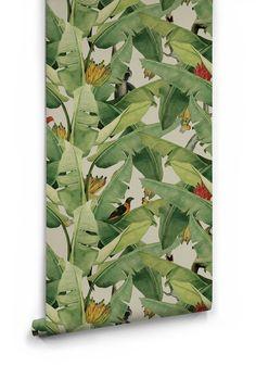 Jungle Fever Wallpaper Designed by Kingdom Home