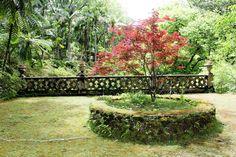 Recanto - Parque Terra Nostra - Furnas - São Miguel - Açores (Azores)