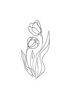 Flower Lines Poster in the group Prints / Sizes / Minimalist Drawing, Minimalist Art, Line Art Flowers, Flower Art, Art Sketches, Art Drawings, Illustration Tattoo, Contour Drawing, Simple Line Drawings