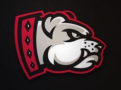 Bulldogs_final by Matt Willcox via Dribbble • #logo #design # illustration #illustration