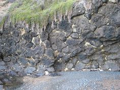 Spectacular pillow lava formed Mybp when masses of molten lava solidified on the sea floor. White limestone between the pillows represents original limey sediment. Continental Shelf, Sea Floor, Volcanic Rock, Lava, Pillows, Cushions, Pallet, Pillow Forms, Cushion