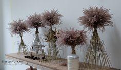 Organically grown on flower farm Bisselingskaat in the Netherlands. Dried Flower Arrangements, Floral Centerpieces, Dried Flower Bouquet, Dried Flowers, Bad Brückenau, Flower Names, Ceremony Backdrop, Table Flowers, Flower Farm