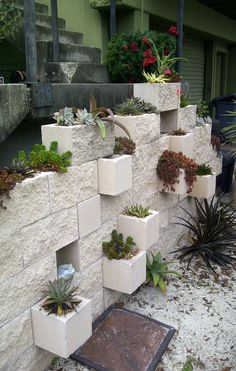 cinderblock vertical succulent garden @ the Jacksonville Zoo and Gardens