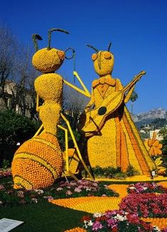 Sculptures made out of oranges!!!