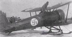 Ilmavoimat Bristol Bulldog (from my alternative history of the Winter War - http://www.alternativefinland.com/ramifications-1931-military-review-ilmavoimat/)