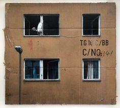 Evol, CNo4 (HPM, Neighborhood Watch Version #4) (2011)