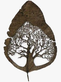 I love the use of negative space in art. I also love the natural design of trees and other things in nature.