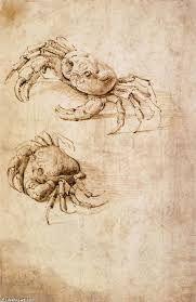 Resultado de imagen para dibujos de Leonardo da vinci