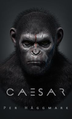 Caesar by PerperRulez I also Saw Dawn Of The Planet Of The Apes. And I agree with you it's an Awesome Film.