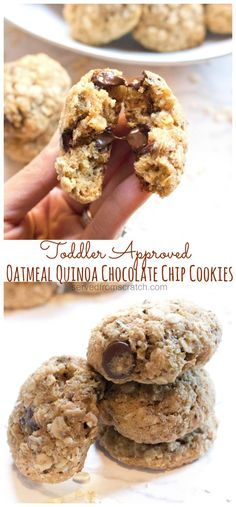 Oatmeal Quinoa Chocolate Chip Cookies - Served From Scratch - Cookies Recipes Quinoa Cookies, Healthy Cookies, Soft Chocolate Chip Cookies, Chocolate Chip Oatmeal, Cookies Soft, Chocolate Chips, New Year's Desserts, Delicious Desserts, Health Desserts