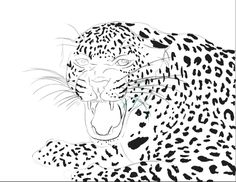 Leopard by sachaXD