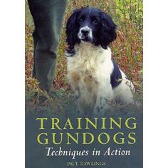 This film presents a step-by-step guide to training a gun dog. It explains how to teach a puppy good behaviour and a young dog obedience before gun dog training begins.