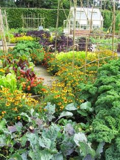 Are you currently dreaming of a potager kitchen garden? Learn such a potager garden is, how you can design your kitchen garden with some sample the kitchen potager garden layout
