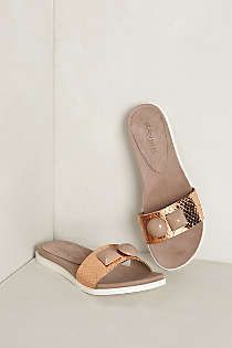 Anthropologie - Sun Path Slides