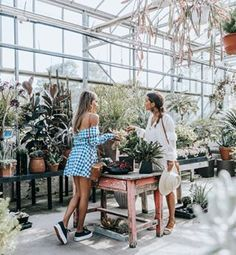 Looking for plants with @sincerelyjules around The Hamptons  #REVOLVEinthehamptons @revolve - Sara (@collagevintage)