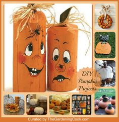 DIY Pumpkin Projects -  see them all  http://thegardeningcook.com/diy-pumpkin-projects-and-crafts/