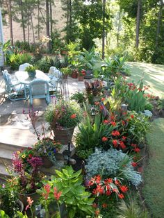 Tropical garden around a patio, luv it! Must do it at our home :)