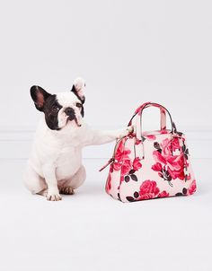discover the cameron street collection from kate spade new york. fe597476ff6