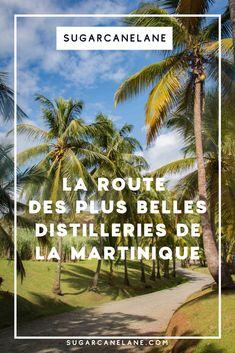 Que vous habitiez la Martinique ou que vous y soyez de passage, Sugarcanelane vous invite à prendre la route des distilleries et plantations de la Martinique. Voici un guide pour vous lancer à la découverte des distilleries de rhum et des anciennes sucreries ! Plantation, Distillery, Guide, Voici, Rum, Caribbean, Beach, Water, Travel