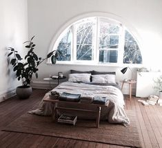 Open Bedroom with Natural Light | Hardwood Floors | White Walls