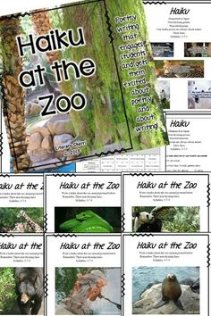 A fun and engaging writing activity to use as a stand-alone, to include in your poetry unit, or to include in an integrated ELA and Science unit! Students review haiku formatting, read five original haiku poems about zoo animals, then write their own haiku about their favorite zoo animal. Perfect to integrate after a field trip to the zoo, mini-research projects, or a virtual field trip! Grading Rubric, Learning Objectives, and Common Core State Standards all included!