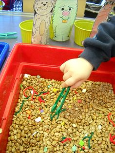 Large tub, beans, colored beads, 3 colors of multiple pieces of yarn, 3 colors of monsters, small tubs (margarine tub size), tongs *skills: fine motor (pinching and squeezing), sorting, sensory (texture), counting, compare and contrast