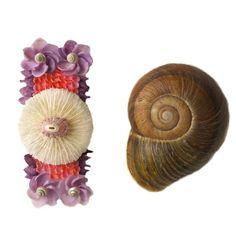 Mermaid Seashell Barrette Mushroom Coral Pink by TheMermaidsBox