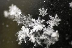 Have you ever looked at a snow flake up close? It's amazing.
