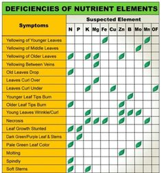 Plant Nutrient Deficiency Leaf Illustrations and Charts Reference Guide | Big Picture Agriculture