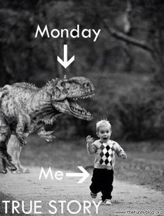 The Random Vibez gets you the best collection of Funny Monday Memes which expresses it all. Get into the mood for the week with these Awesome Monday Memes!