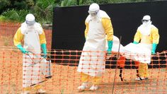 CONAKRY, GUINEA—With the death toll in West Africa continuing to rise amid a new outbreak of the Ebola virus, leading medical experts announced Wednesday that a vaccine for the deadly disease is still at least 50 white people from being developed. Tb Joshua, Off The Grid News, White People, Nbc News, West Africa, The Struts, How To Stay Healthy, Obama, Natural Remedies