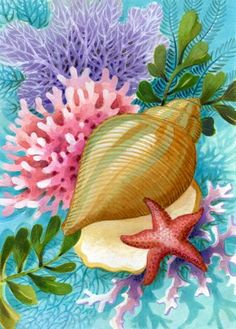 Shells & Corals main page Nautical Prints, Nautical Art, Cartoon Sea Animals, Underwater Painting, Seashell Art, Sea Art, Beach Crafts, Beach Scenes, Fish Art