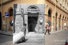 Dear Photograph, Homeland, Budapest, Past, Restoration, Death, Smile, Facebook, History