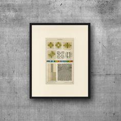 Polarization of Light Art Print C.1900 Antique Lithograph - Wall Art, Home…