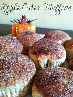 Apple Cider Muffin Recipe ~ perfect for Fall!