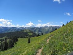 A hiking and biking trail near Crested Butte