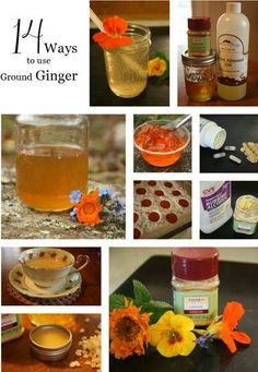 14 Creative Ways to Use Ginger herbsandoilshub. Ginger has a lot of health benefits and ground ginger is easily available. Jan shares 14 different healthy ways to use ground ginger, Healing Herbs, Medicinal Herbs, Natural Healing, Natural Health Remedies, Herbal Remedies, Holistic Remedies, Natural Cures, Natural Medicine, Herbal Medicine