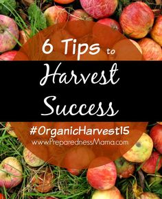 Because a garden is a terrible thing to waste. These 6 handy tips for harvest success will help you plan and keep your harvest going as long as possible. #OrganicHarvest15 | PreparednessMama