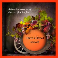 Autumn is a second spring when every leaf is a flower. Have a blessed season! <3