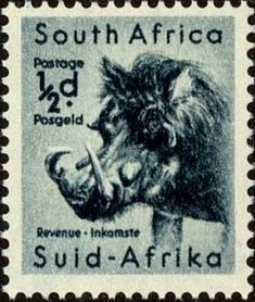 Rare Stamps, Vintage Stamps, African History, African Art, Stamp Collection Value, Wild Animals List, Union Of South Africa, African Animals, Stamp Collecting