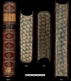 v.5-6 - Herbarium Blackwellianum emendatum et auctum, id est, Elisabethae Blackwell collectio stirpium : - Biodiversity Heritage Library