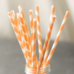 Peach Striped Paper Straws (24)