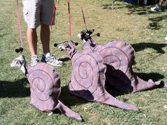 Italian greyhound costumes below were some of the funniest and most original Ive ever seen. Iggy snails. How clever is that?