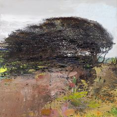Kurt Jackson: Under the Greenwood: Picturing British Trees - Present - St. Barbe Museum