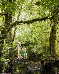50 Best Places to Live: Sherwood Oregon # 5 Cottage Grove Oregon, Sherwood Oregon, Cnn Money, Outside Magazine, Oregon Living, Family Road Trips, Oregon Travel, Best Places To Live, Portland Oregon