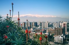 A Look into Chile's innovative startup government - http://www.popularaz.com/a-look-into-chiles-innovative-startup-government/